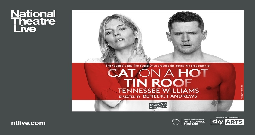 the portrayal of sexuality in tennessee williams play cat on a hot tin roof and a streetcar named de Cat on a hot tin roof – tennesse williams producing his pulitzer prize-winning a streetcar named another pulitzer prize-winning play, cat on a hot tin roof.